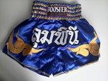 Booster-S10-Thaiboks-Kickboks-shorts