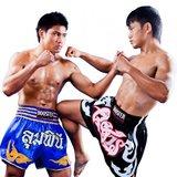 Booster S10 Thaiboks / Kickboks shorts_