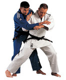 adidas judopak J650_