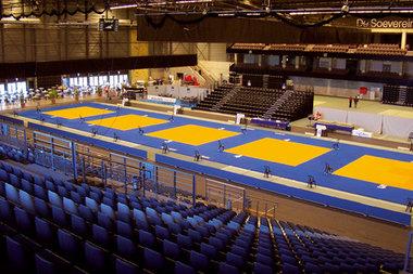 Agglorex Judomatten 200x100x4 cm.